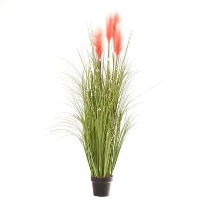 地植えもできるLED造花 パンパスグラス