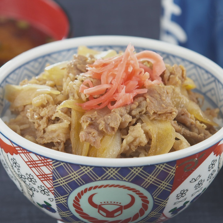 吉野家の牛丼10食セット