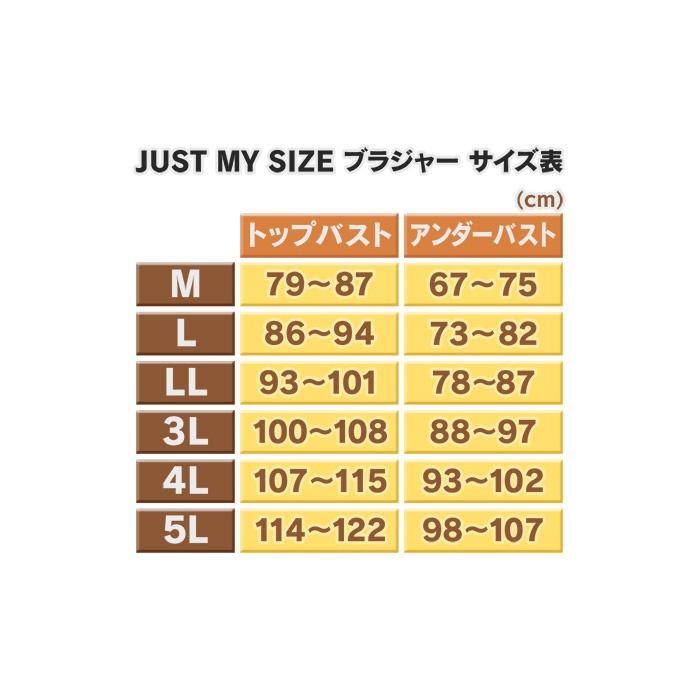 d2303869f1 ジャストマイサイズ アンダーメッシュ レーシーブラNo.580328 通販 - QVCジャパン